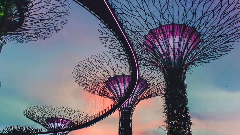 Die bunt beleuchteten konstruierten Bäume haben die gleiche Struktur, wie Entscheidungsbäume, mit denen selbstlernende Algorithmen arbeiten.