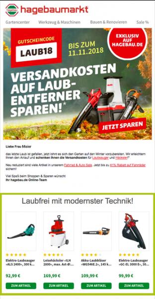 Der Screenshot zeigt ein Beispiel für Newsletter-Tipps. Dargestellt wird ein Newsletter von hagebaumarkt, der personalisierte Empfehlungen passend zum Newsletter-Thema enthält.